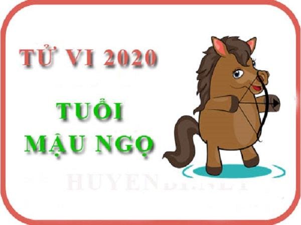 Tổng quan tử vi tuổi Mậu Ngọ năm 2020