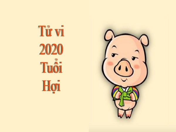 Tử vi tuổi Quý Hợi năm 2020