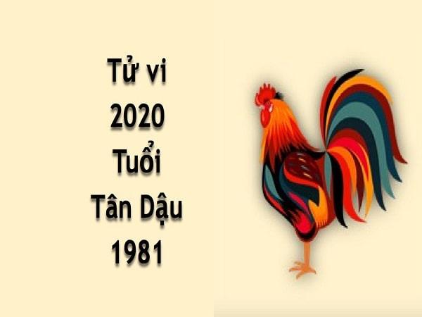 Tổng quan tử vi tuổi Tân Dậu năm 2020