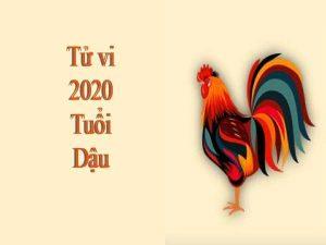Tử vi tuổi Dậu năm 2020: Tài lộc không tốt, tình duyên đào hoa