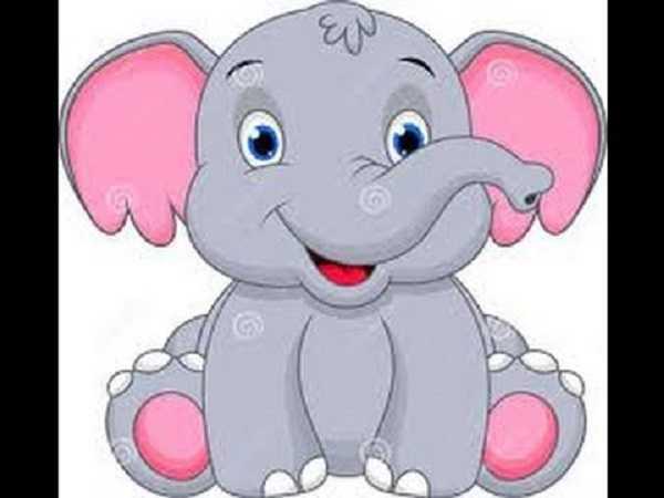 Mơ thấy con voi mang đến điềm báo gì?