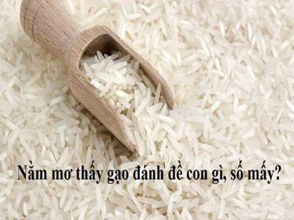 Mơ thấy gạo đánh cặp số gì?