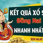 Dự đoán kết quả XS Đồng Nai Vip ngày 26/02/2020