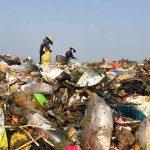 Mơ thấy rác bẩn là điềm báo lanh hay dữ? Đánh số mấy?
